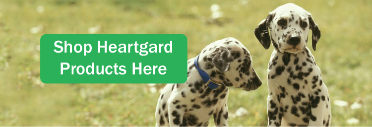 What Is Heartgard Used For
