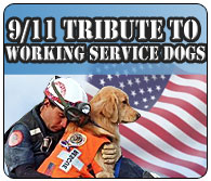 9/11 Tribute to Service Dogs
