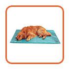Cooler Bed