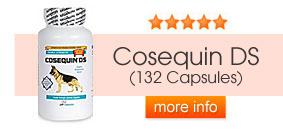 Cosequin DS (120 Capsules)