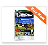 ScareCrow Automatic Deterrent