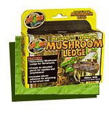 Mushroom Ledge