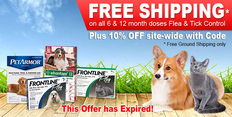 Flea &amp; Tick one day sale
