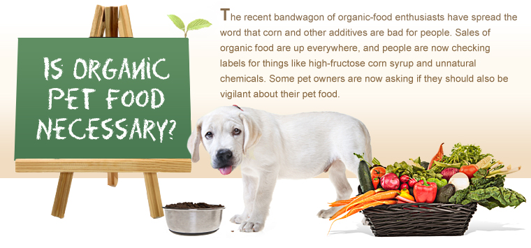 Organic Pet Food 