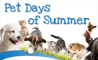 Pet Days of Summer