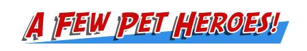 A Few Pet Heroes