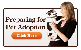 Preparing to Adopt a Pet