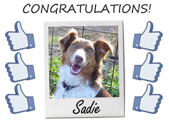 Congratulations Sadie!