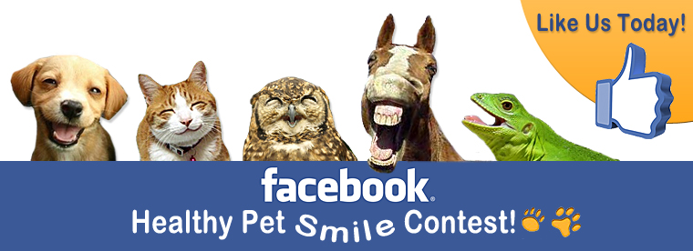 Facebook Pet Smile Contest!