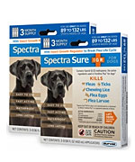 Spectra Sure 6 Month Blue
