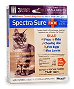 Spectra Sure 3 Month Cat
