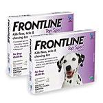 Frontline Top Spot Purple