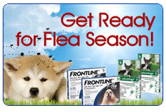 Flea Tick Sale