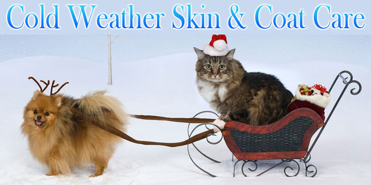 Cold Weather Skin & Coat Care