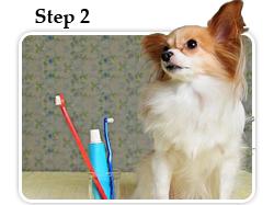 Home dental care regimen