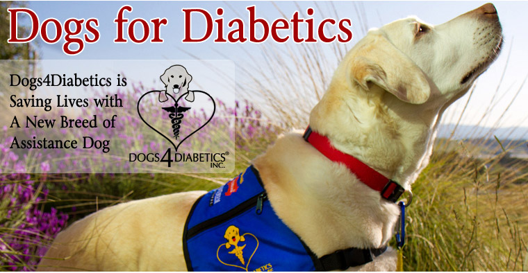 Dogs for Diabetics