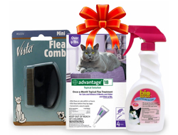 Cat Flea Kit