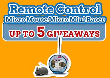 Remote Control Micro Mouse Micro Mini Racer
