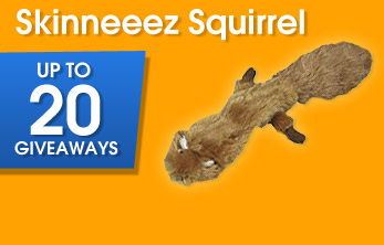 Skinneeez Squirrel