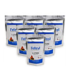 Felisyl Immune Support 6 Pack for Aid in Feline Herpes