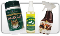 Herbal Remedies, flea tick herbal remedies