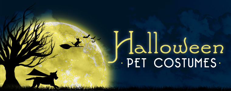 Shop for pet costumes, halloween themed toys and treats.