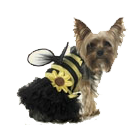 NEW! Leg Avenue Dog Costumes Daisy Bee Costume