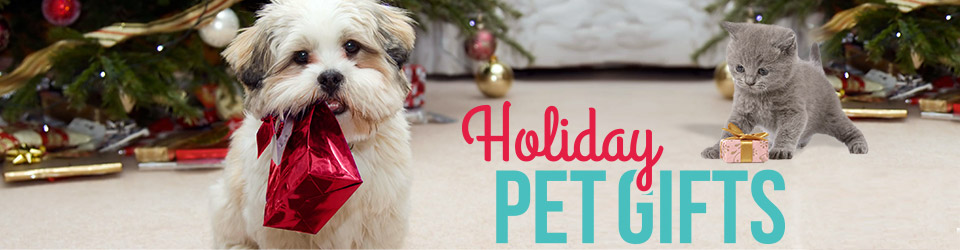 Holiday Pet Store