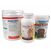 Arthritis Power Pack Level 3