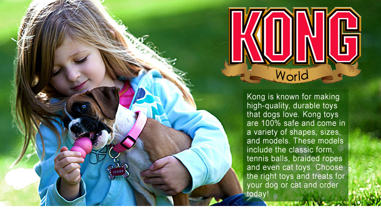Kong World