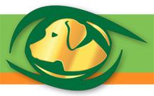 Ocu-Glo Dog