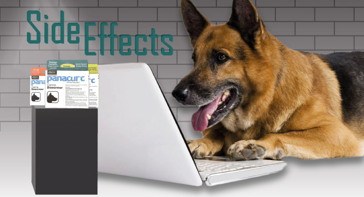 hookworms in puppies side effects Usage, warnings, side effects, and community information for the prescription drug sentry hc worm x plus for puppies and small dogs.