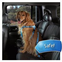 Outward Hound Car Booster Seat