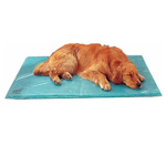 Canine Cooler Bed | Cool Beds