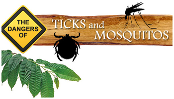 The Dangers of Ticks and Mosquitos