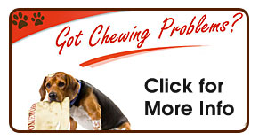 Chewing Problems