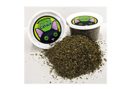Krazy Kitty Catnip