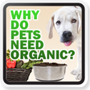 is organic pet food necessary