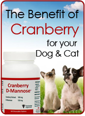 Cranberry Benefits for Dogs and Cats