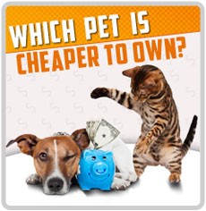 Which Pet is Cheaper to Own?