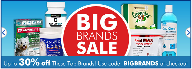 Big Brands Sale