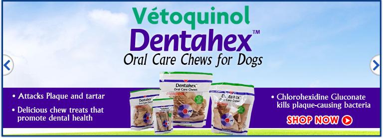 Vetoquinol Dentahex