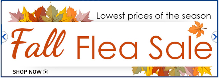 Fall Flea Sale