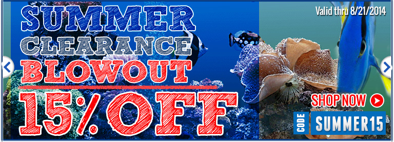 Summer Clearance for Fish Products!