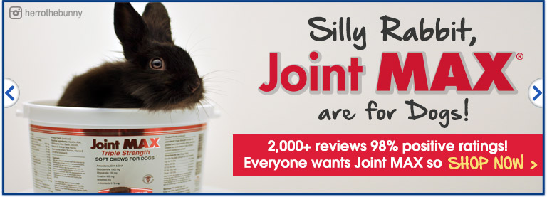 Joint MAX TS is for Dogs!