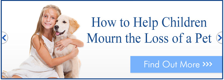 How to help children mourn their pets