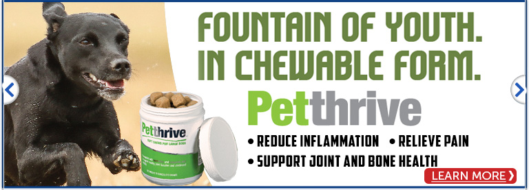 Pet Thrive