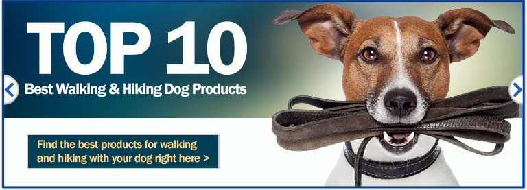 Top 10 Walking & Hiking Dog Products
