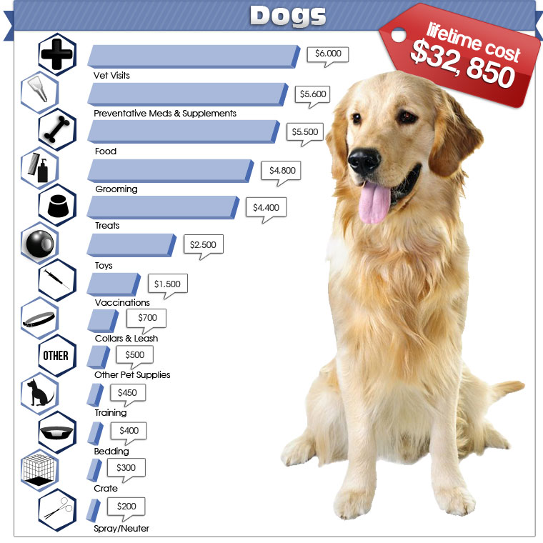 Cheapest Dog Food Autoship