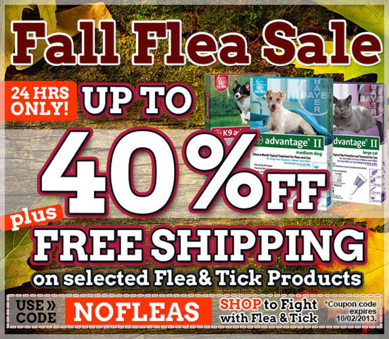 Biggest Flea Sale of the year.